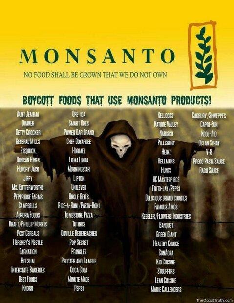 GMO, Monsanto's